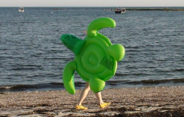 Inflatable Turtle Trots The Beach